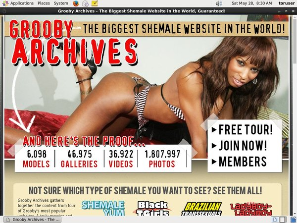 Thegroobyarchives Accept Paypal