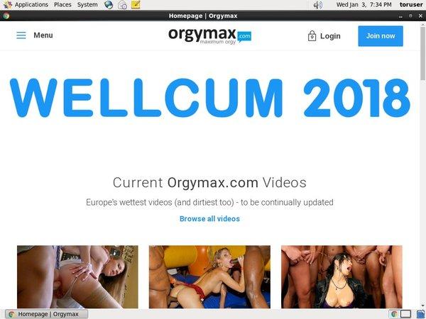 Orgymax.com Accounts