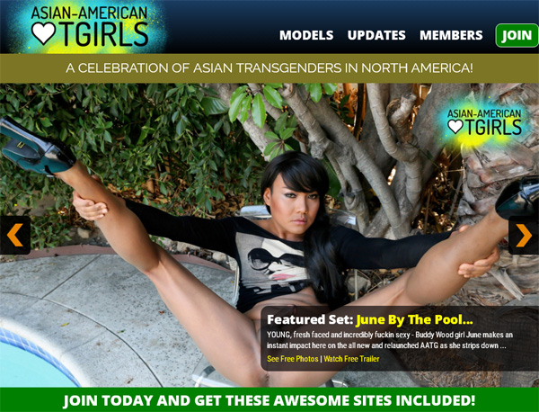 Get Asian American TGirls Promo Code