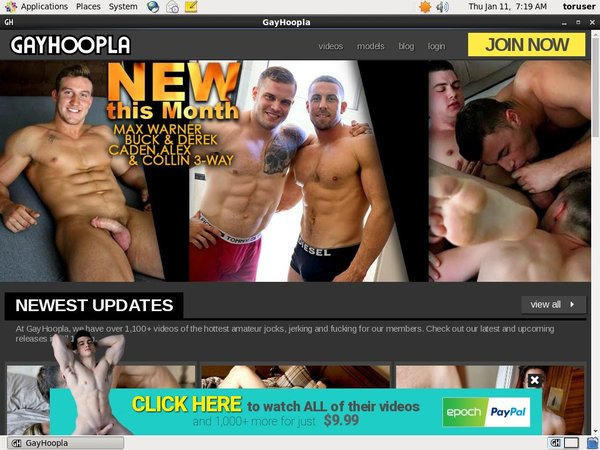 Discount Gay Hoopla Offer